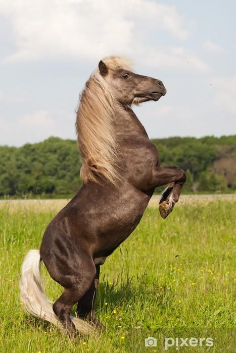 Nálepka Pixerstick Pony macht Männchen - Savci
