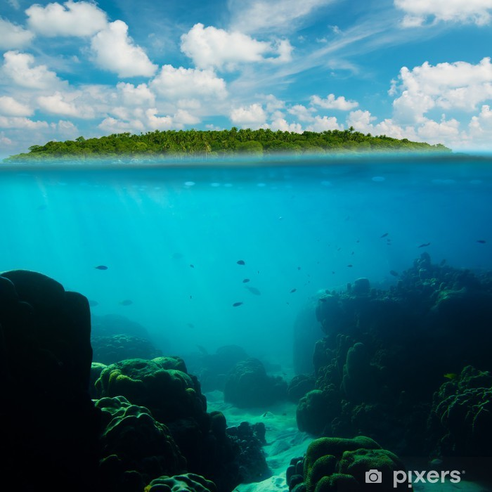 Tropical underwater shot splitted with island and sky Poster - Themes