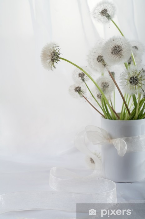Papier peint vinyle Dandelions - Fleurs