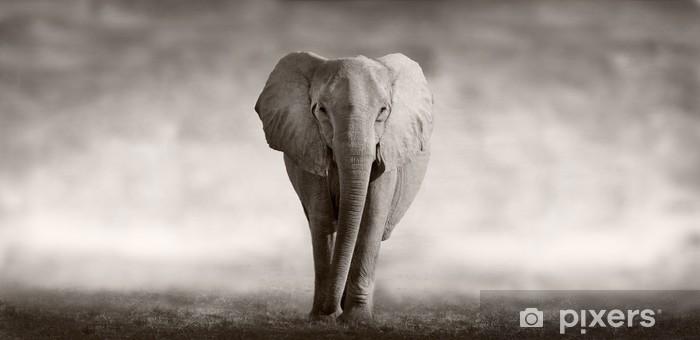 Sticker pour table et bureau Éléphant -
