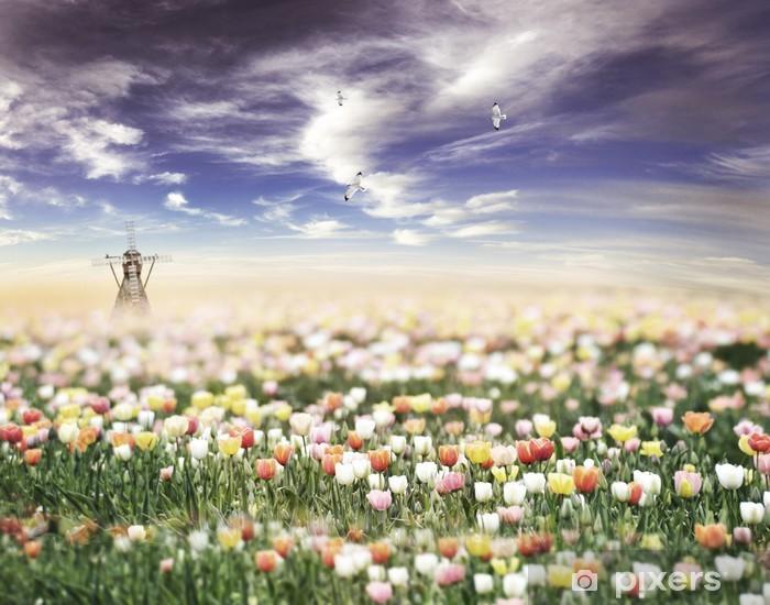 Fototapeta winylowa Tulipany polu o zachodzie słońca - Krajobraz wiejski