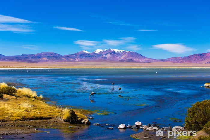 Papier peint vinyle Tara Salar de Atacama au Chili, en Amérique du Sud - Eau