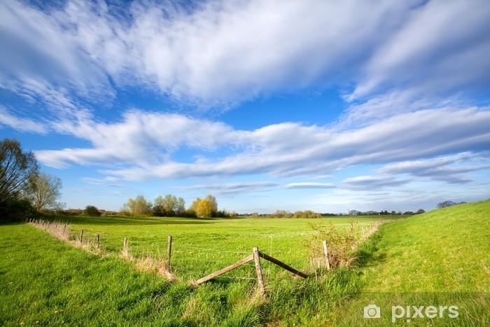 Fototapeta winylowa Ogrodzenia na słoneczny Holenderski gruntów rolnych - Niebo
