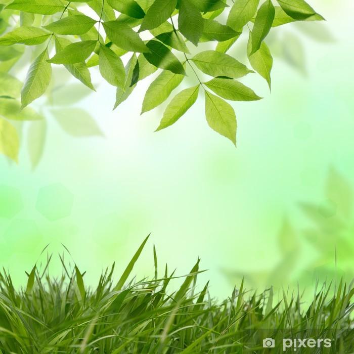 Naklejka Pixerstick Naturwiese drzewo - Pory roku