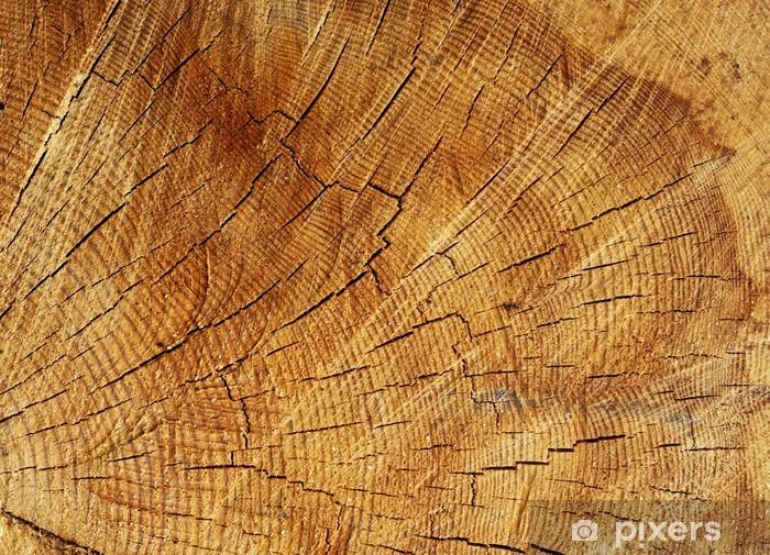 Papier peint vinyle Structure du bois - Textures