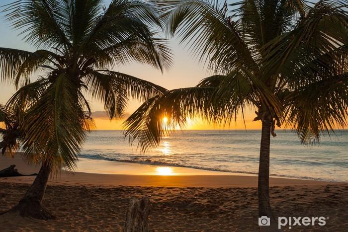 Vinilo Pixerstick Árboles puesta de sol playa de palma olas - Palmeras