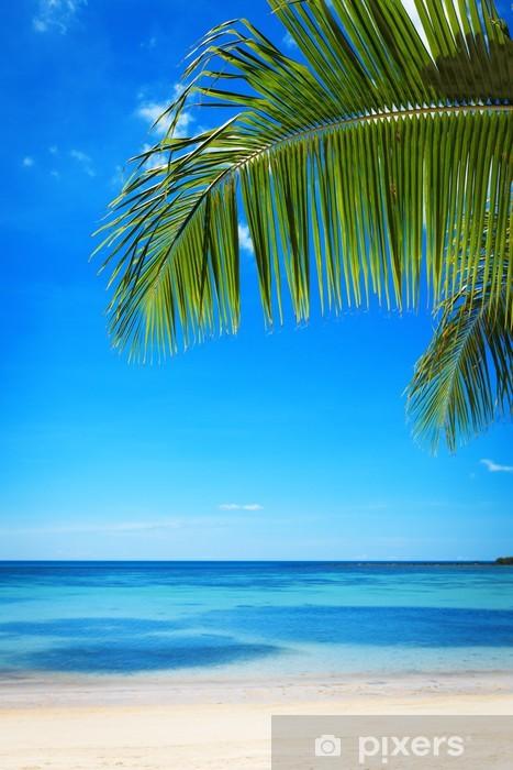 Naklejka Pixerstick Ветки пальмы на фоне моря и неба - Tła