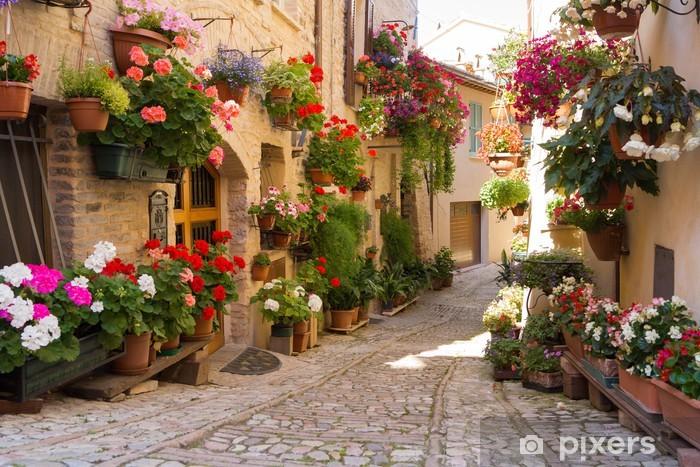 Sticker Pixerstick Alley avec des fleurs, Spello -