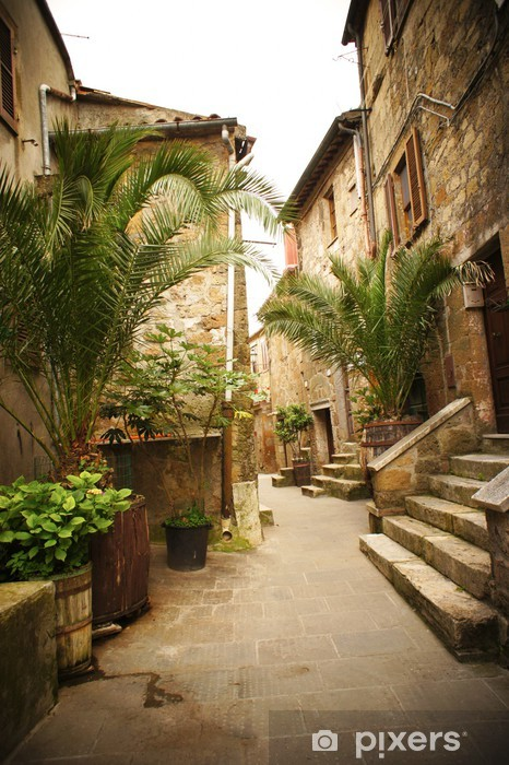 Narrow Alley With Old Buildings In Typical Italian Medieval Town Vinyl Wall Mural -