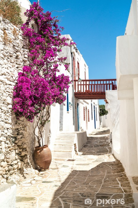 Traditional greek alley on Sifnos island, Greece Vinyl Wall Mural - Themes