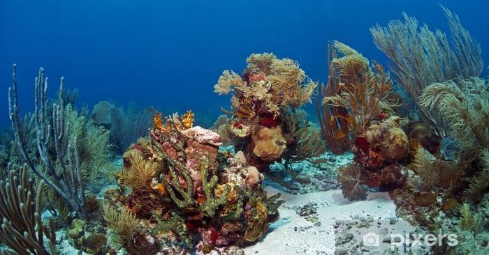 Fotomural Estándar Filón coralino subacuático Roatan - Arrecife de coral