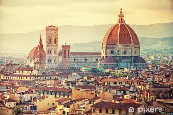 Beautiful Florence Vinyl Wall Mural - Themes