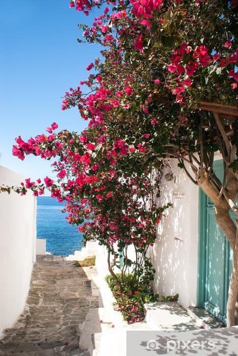 Fototapeta winylowa Tradycyjne greckie aleja na Sifnos Island, Grecja - Tematy