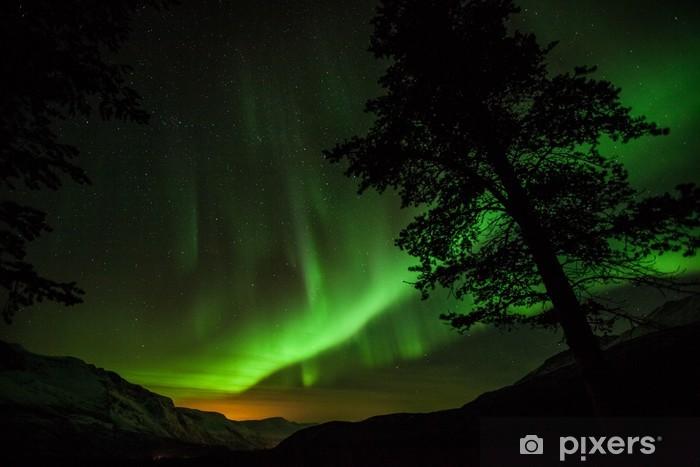 Fototapeta winylowa Aurora Borealis (Zorza polarna) w Szwecji - Europa