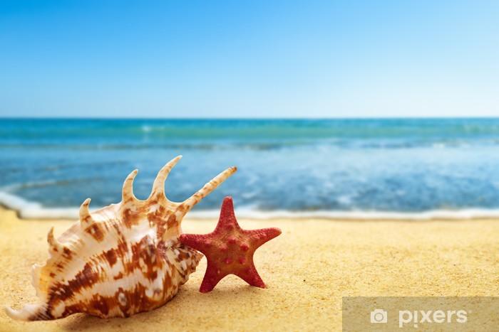 Pixerstick Aufkleber Seestern und Muschel am Strand - Urlaub