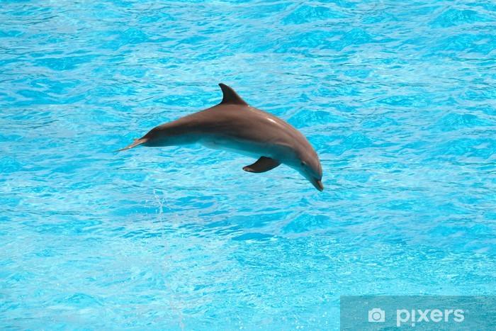 Pixerstick Klistermärken Delfin - Teman
