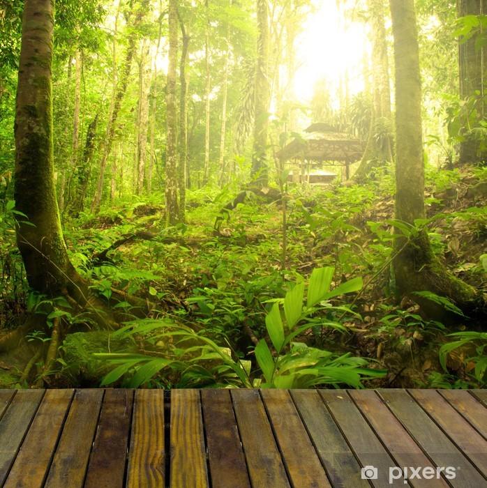 Vinyl Fotobehang Regenwoud met straal van licht en plank hout, geschikt voor prod - Thema's