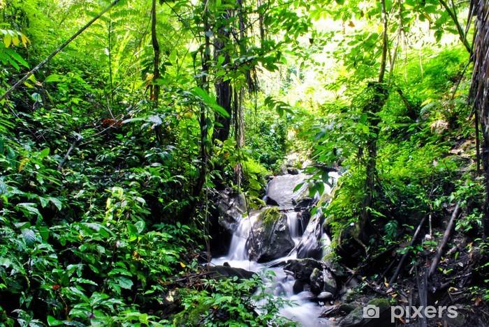 Fotomural Estándar Selva en Tentena - Temas