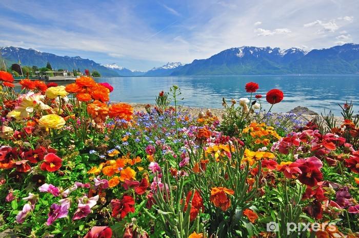 Flowers in swiss Alps Vinyl Wall Mural - Destinations
