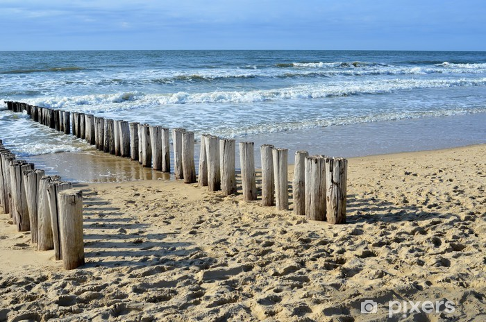 breakwaters on the beach at the north sea in Domburg Holland Pixerstick Sticker - Themes