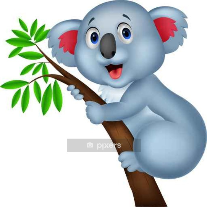 Adesivo da parete koala carino cartone animato pixers