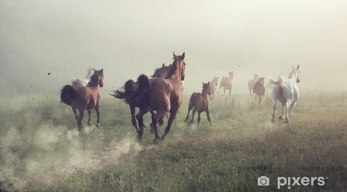 Vinyl Fotobehang Groep van paarden op de weide - Landbouw