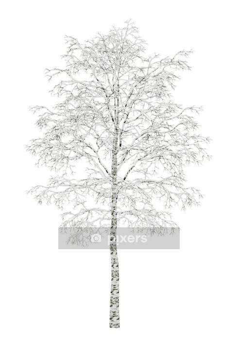 Muursticker Winter berk boom geïsoleerd op witte achtergrond - Muursticker