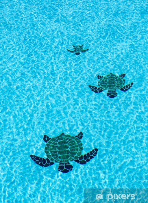 Three tiled turtles on bottom of swimming pool Wall Mural - Vinyl