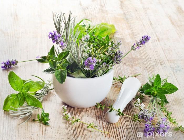 Fototapeta winylowa Świeże zioła - Zioła