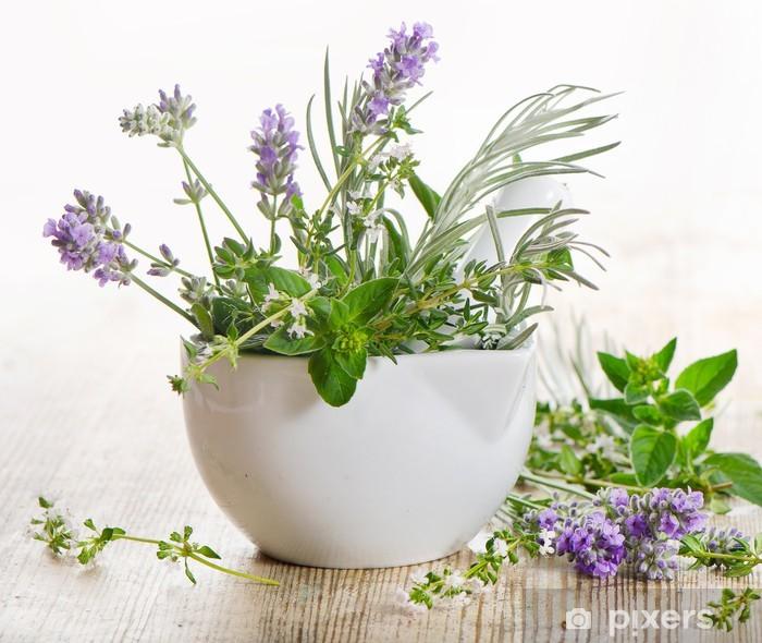 Fototapeta samoprzylepna Świeże zioła - Przyprawy i zioła