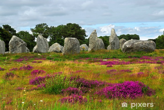 Pixerstick Aufkleber Prehistoric Megalithen Menhire in Carnac, Frankreich - Heidekraut