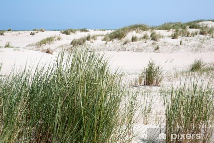Papier peint vinyle Herbe de dune en face des dunes de l'île de Norderney - Europe