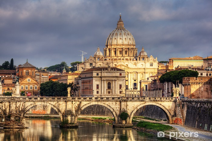view at St. Peter's cathedral in Rome, Italy Vinyl Wall Mural - Themes