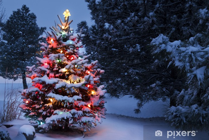 Papier peint vinyle La neige a couvert Surexposition vacances d'arbre de Noël tempête hivernale - Noël