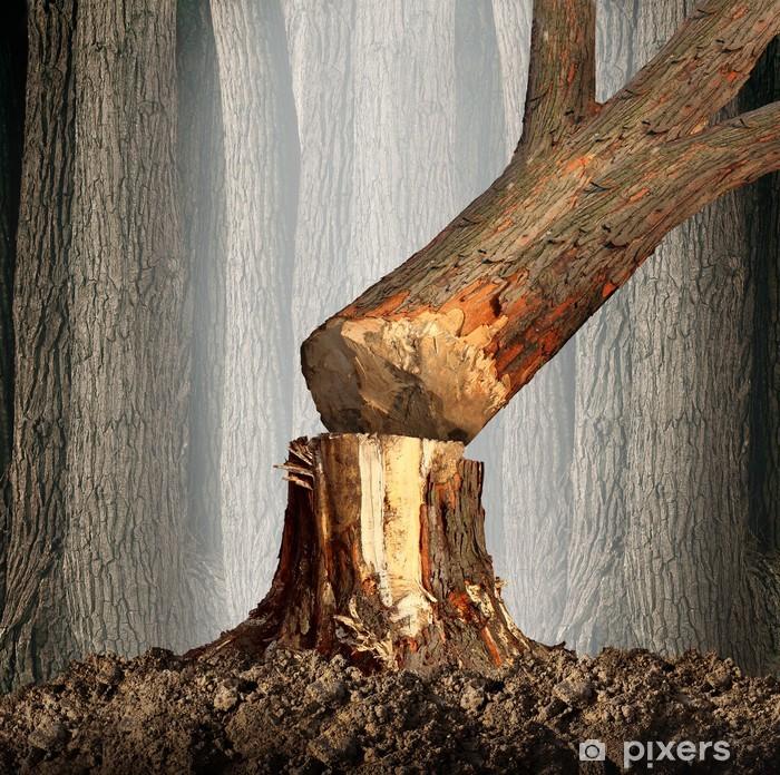 Nálepka Pixerstick Odlesnění - Rostliny
