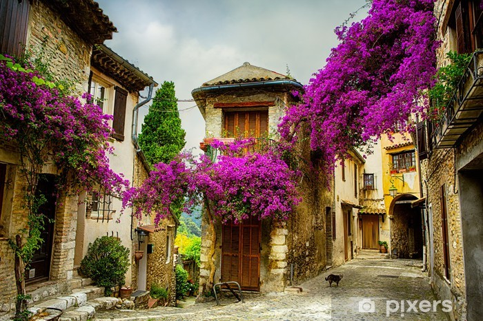 art beautiful old town of Provence Vinyl Wall Mural - Themes