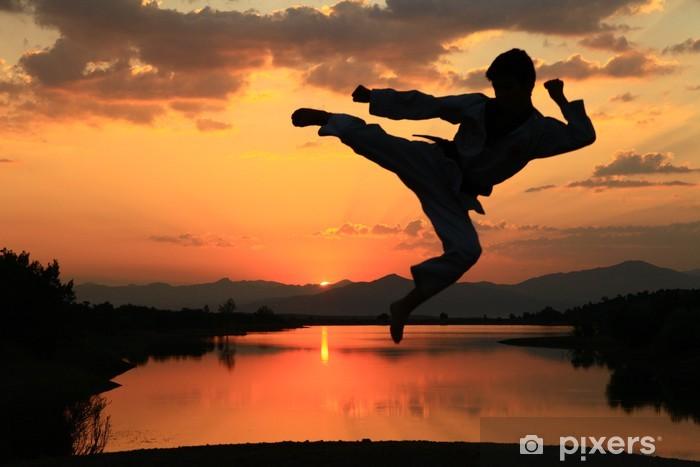 Vinyl Fotobehang Karate - Thema's