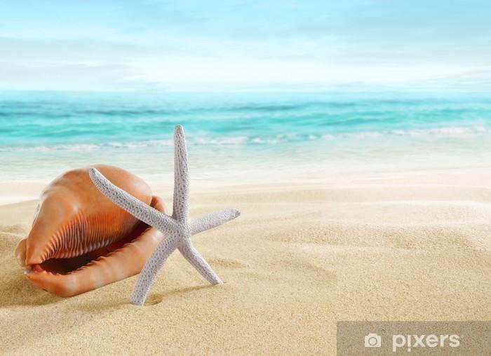 Pixerstick Aufkleber Big Shell und Seesterne am Strand. - Urlaub