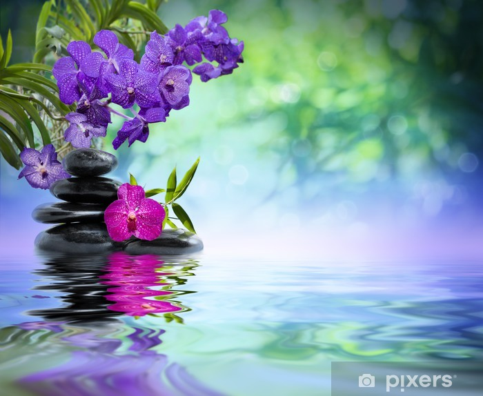 violet orchids, black stones on the water Vinyl Wall Mural - Styles