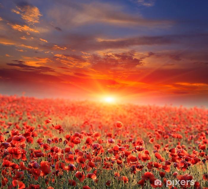 Vinilo Pixerstick Campo de amapolas en la puesta del sol - Temas