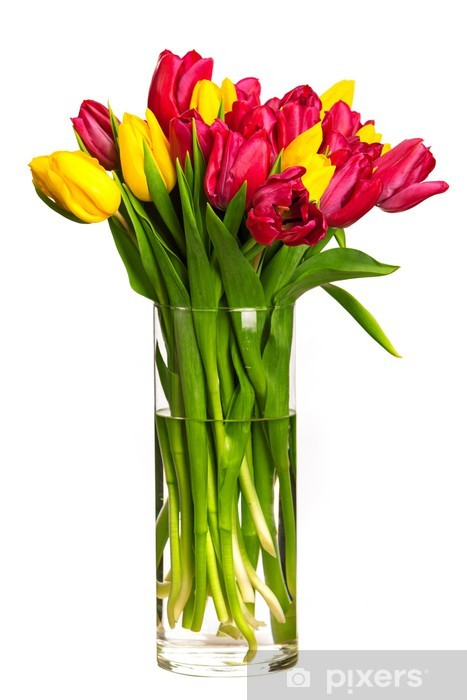 Naklejka Pixerstick Bukiet tulipanów nad białym - Kwiaty