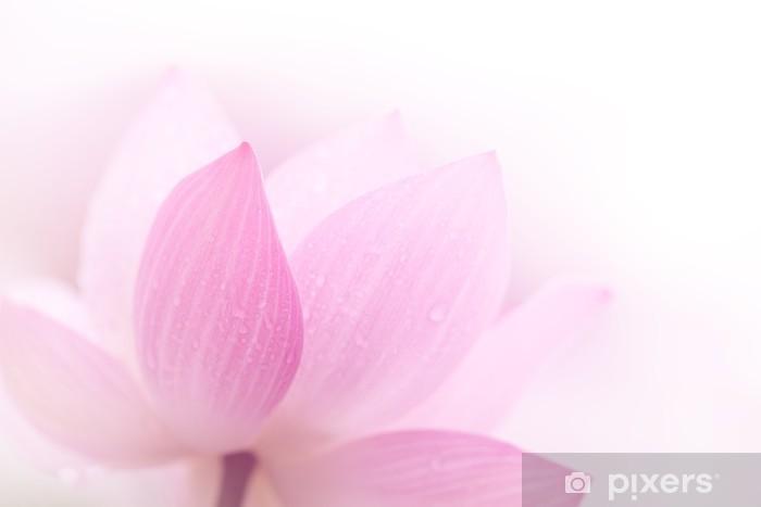 Sticker Pixerstick Gros plan sur le pétale de lotus - iStaging