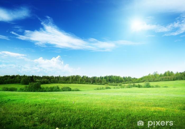 Nálepka Pixerstick Pole trávy a dokonalé nebe - Témata