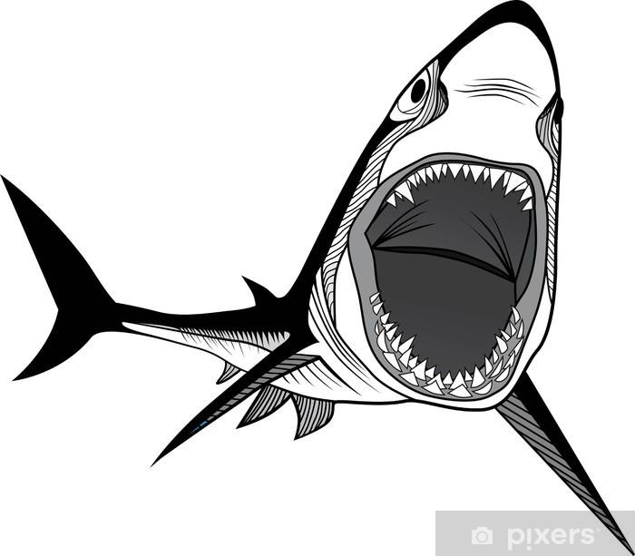 Papier peint Tête d'un requin • Pixers® - Nous vivons pour changer