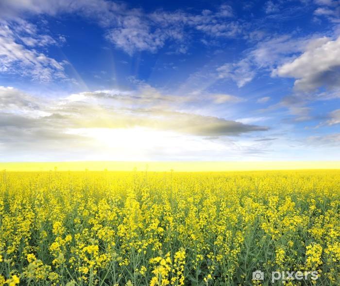 Fototapeta winylowa Pole rzepaku z pięknym chmury - zakładu dla zielonej energii - Krajobraz wiejski