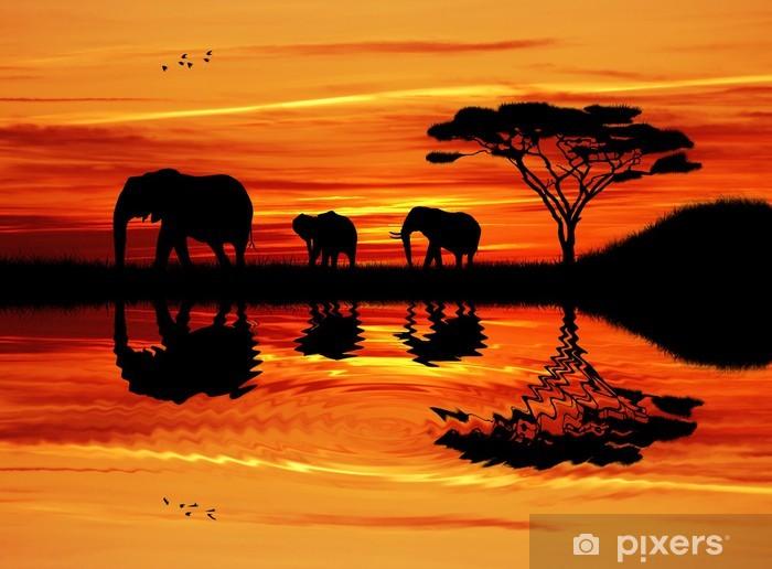 Fototapeta winylowa Słoń sylwetka na zachodzie słońca - Słonie