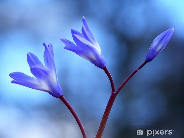 Nálepka Pixerstick Modrá jarní květina - Roční období