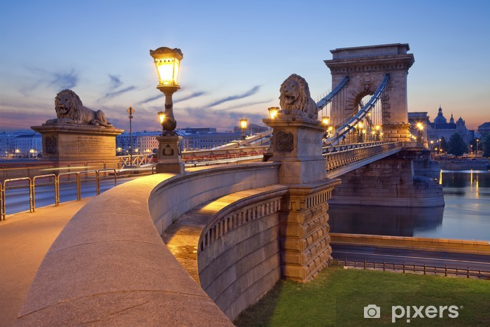 Chain Bridge, Budapest. Pixerstick Sticker - Themes