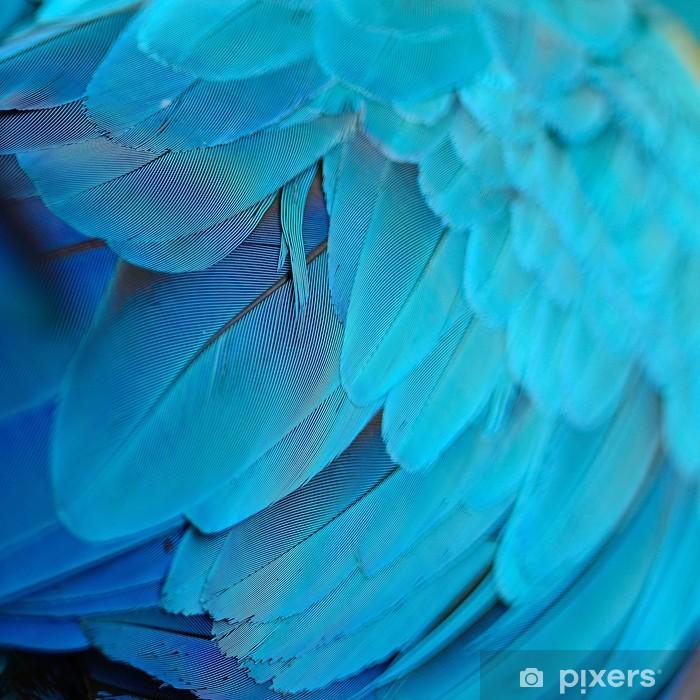 Papier peint vinyle Blue and Gold Macaw plumes - Thèmes