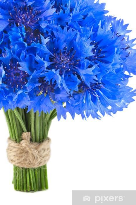 Adesivo Pixerstick Mazzo di bei fiori blu vivaci di fiordaliso isolato - Fiori